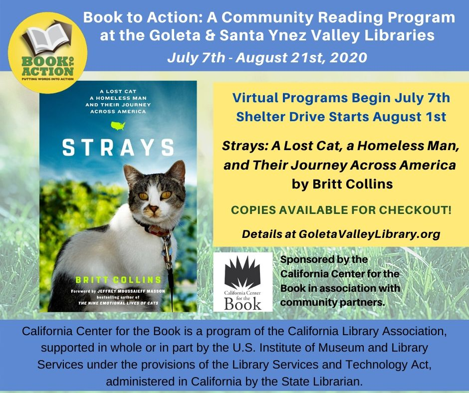book to action strays flyer